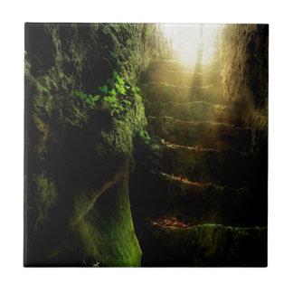 Luz abstracta de las escaleras del gato de la fant teja cerámica