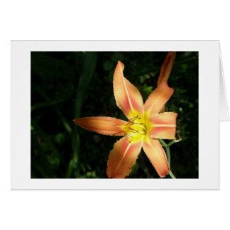 Luz anaranjada tarjeta de felicitación