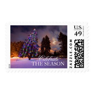Luz asombrosa de la oscuridad y árbol de navidad timbres postales