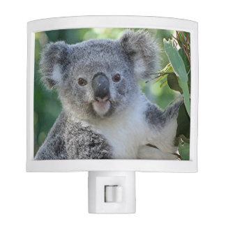 Luz australiana linda de la noche de la koala luces de noche