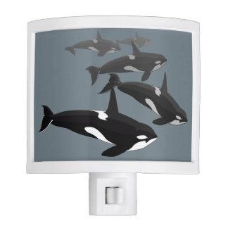 Luz de la noche de la orca del Nightlight de la ba Luz De Noche