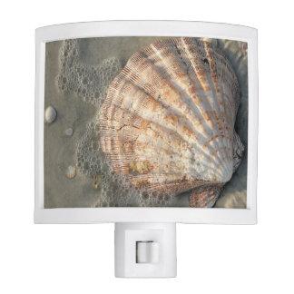 Luz de la noche de Shell del mar de la playa