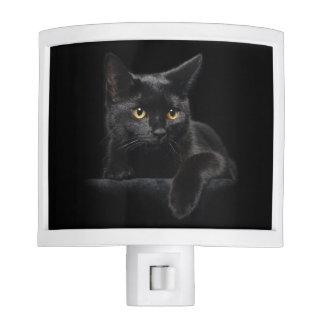 Luz de la noche del gato negro luces de noche