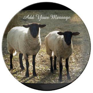 Luz de la tarde de dos ovejas de Suffolk Platos De Cerámica