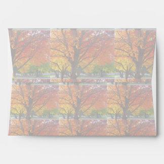 Luz de las hojas de otoño para el sobre de la obra