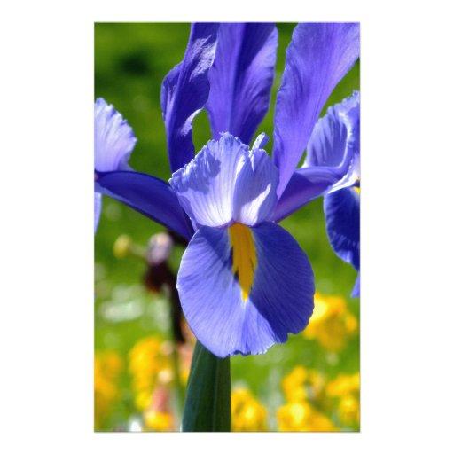 Luz de Sun en el iris azul Papelería