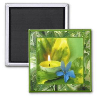 Luz de una vela e imán de las flores