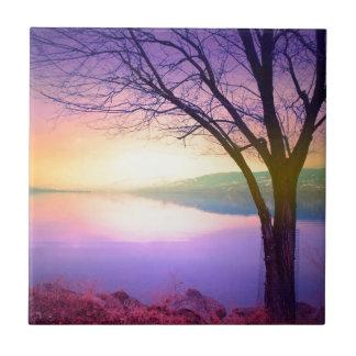 Luz del árbol azulejo cuadrado pequeño
