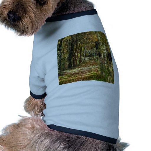 Luz del árbol del otoño camiseta con mangas para perro