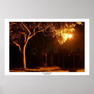 Luz del árbol y de calle póster