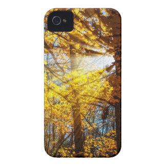 Luz del bosque del otoño Case-Mate iPhone 4 cárcasa