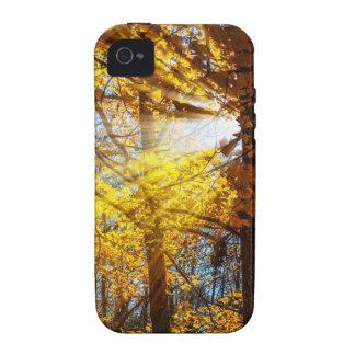 Luz del bosque del otoño iPhone 4/4S funda