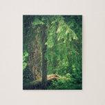 Luz del bosque puzzles