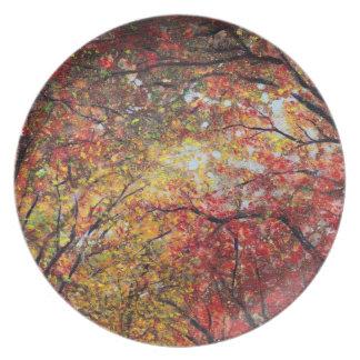 Luz del otoño plato