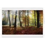 Luz del otoño tarjetas
