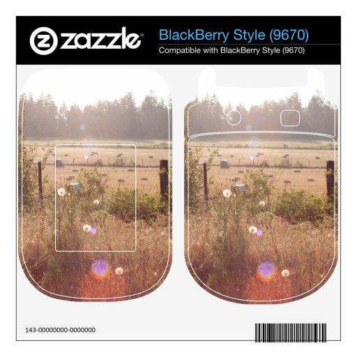 Luz del sol de la mañana BlackBerry calcomanías