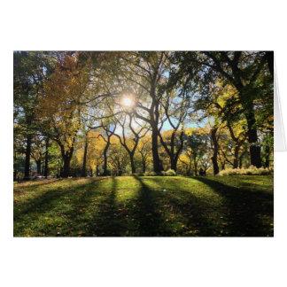 Luz del sol en Central Park Tarjeta Pequeña