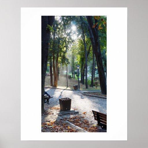 Luz del sol en el parque - la India - poster