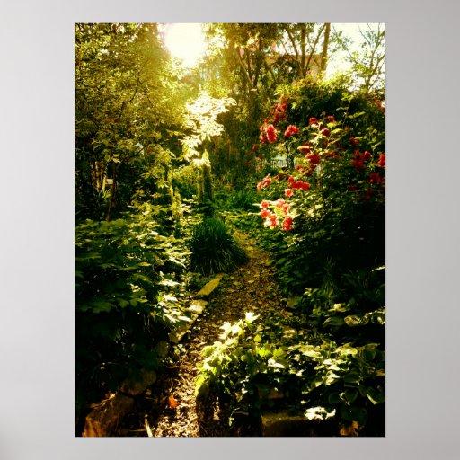 Luz del sol sobre una trayectoria del jardín, póster