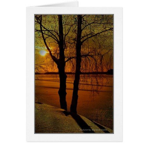 Luz del sol tarjeta de felicitación