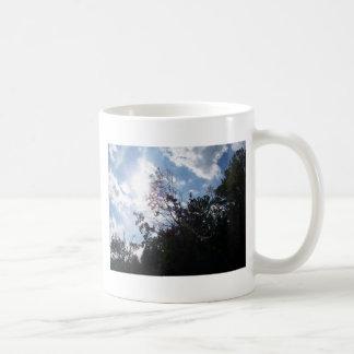 luz del sol tazas de café