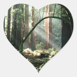Luz en las maderas calcomania corazon