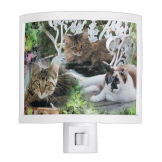 luz personalizada de la noche del mascota de la lámpara de noche