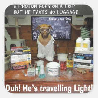 Luz que viaja del fotón del perro del conocimiento calcomanía cuadradas
