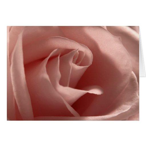 Luz - rosa - color de rosa tarjeta de felicitación