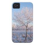 Luz solitaria Frost del árbol Case-Mate iPhone 4 Protector