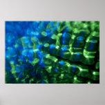 Luz tenue azulverde impresiones