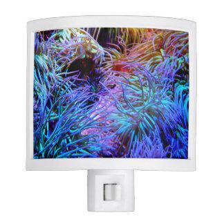 Luz vibrante de la noche del arrecife de coral de