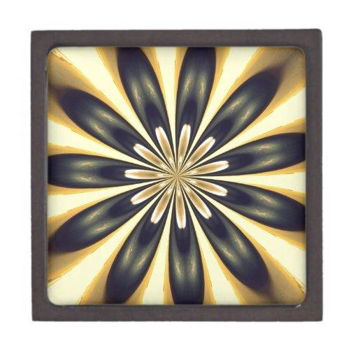 ¡Luz y rayos! Caja De Joyas De Calidad