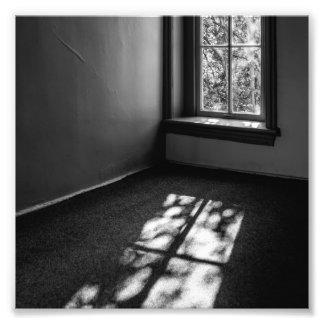 Luz y sombra cojinete