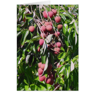 Lychee Fruit Greeting Card