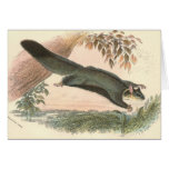 Lydekker - ardilla que vuela Phalanger/el oposum Tarjeta De Felicitación