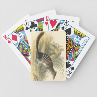 Lydekker - Banded Ant-Eater - Numbat Bicycle Playing Cards