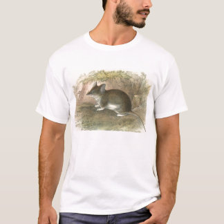 Lydekker - Common Pouched-Mouse T-Shirt