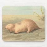 Lydekker - Marsupial Mole Mouse Pad
