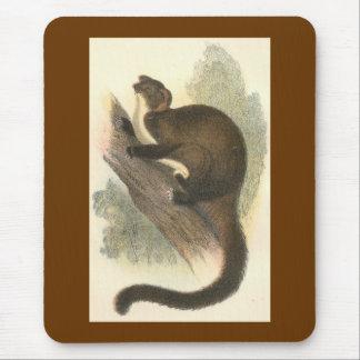 Lydekker - Taguan Flying Phalanger/Possum Mouse Pad