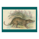 Lydekker - Thylacine - Tasmanian Tiger Greeting Card