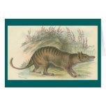 Lydekker - Thylacine - tigre tasmano Tarjeta De Felicitación