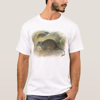 Lydekker - Yellow-Footed Pouched-Mouse T-Shirt