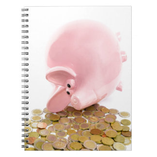 Lying pink piggy bank with pile of euro coins notebook
