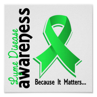 Lyme Disease Awareness 5 Poster