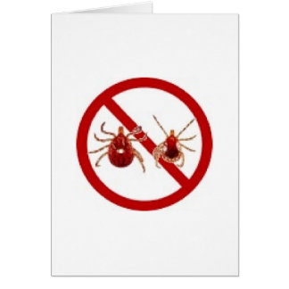 LYME DISEASE AWARENESS ! CARD