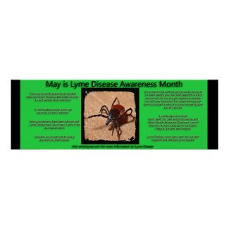 Lyme Disease Awareness Facts Poster