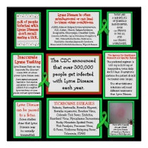 Lyme Disease Awareness Poster