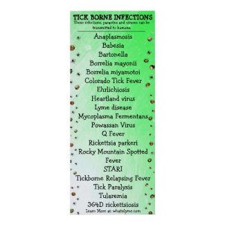 Lyme Disease Awareness Tick Poster