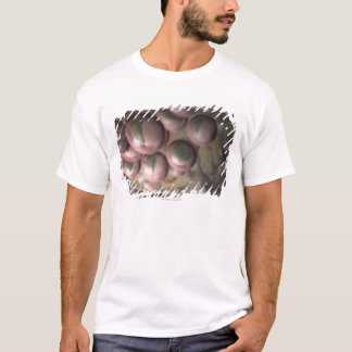 Lymphatic Tissue T-Shirt